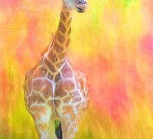 Tall Giraffe Loveliness  by daphsam