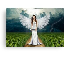 Beautiful angel graph Canvas Print