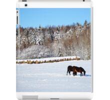Winter on the Farm iPad Case/Skin