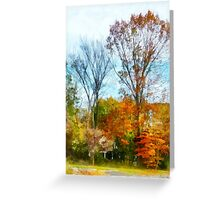 Tall Autumn Trees Greeting Card