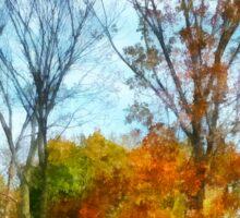 Tall Autumn Trees Sticker