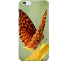 Wings Up - Butterfly iPhone Case/Skin