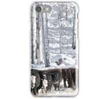Cattle Country iPhone Case/Skin