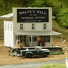 Walnut Hill General Store  by clizzio