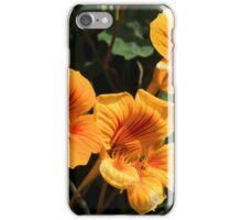 Yellow Wildflowers on a Bush iPhone Case/Skin