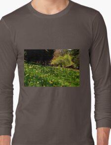 Daffodil Hill Long Sleeve T-Shirt