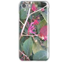 Pink Flower and Forrest Green Leaves iPhone Case/Skin