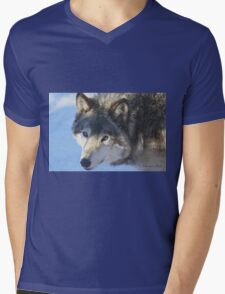 ....the eye of the Wolf ....(click to see large) Mens V-Neck T-Shirt