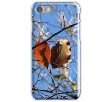 Last Leaves  iPhone Case/Skin