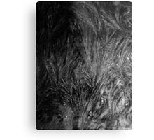 Frosty Window (3589-1) Metal Print