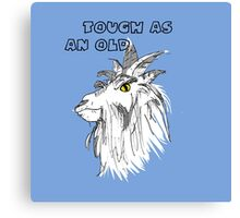 Animals - Tough as an Old Goat Canvas Print