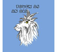 Animals - Tough as an Old Goat Photographic Print