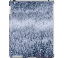 Frozen forests iPad Case/Skin