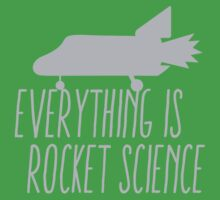 Everything is ROCKET SCIENCE! Baby Tee