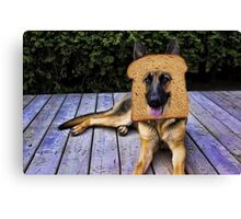 HUMOUR DOG PICTURE>>GERMAN SHEPARD ...INBRED...PICTURE AND OR CARD ECT. Canvas Print