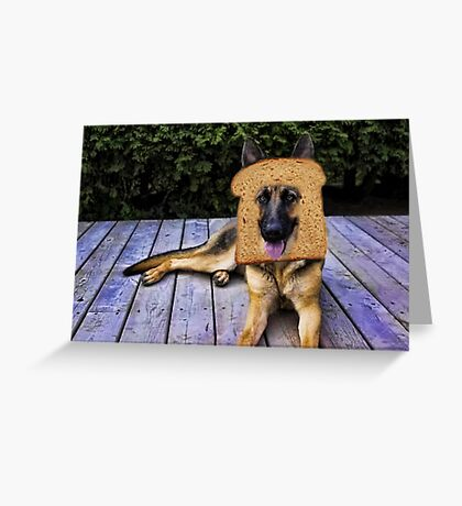 HUMOUR DOG PICTURE>>GERMAN SHEPARD ...INBRED...PICTURE AND OR CARD ECT. Greeting Card