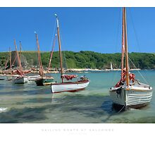 Sailing Boats at Salcombe by Andrew Roland