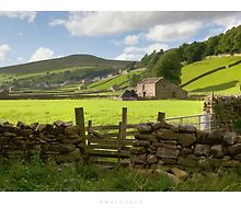 Swaledale by Andrew Roland