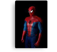Spiderman 2 Canvas Print