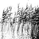 Reeds by Geoff Smith