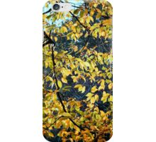 Branches and Leaves iPhone Case/Skin