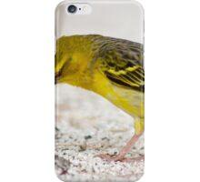 Mauritius Wildlife iPhone Case/Skin