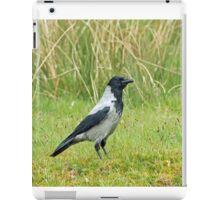 Hooded Crow iPad Case/Skin