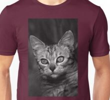 """Chat - Cat """" Peluche """" 03 (c)(h) ) by Olao-Olavia / Okaio Créations 300mm f.2.8 canon eos 5 1989  Unisex T-Shirt"""