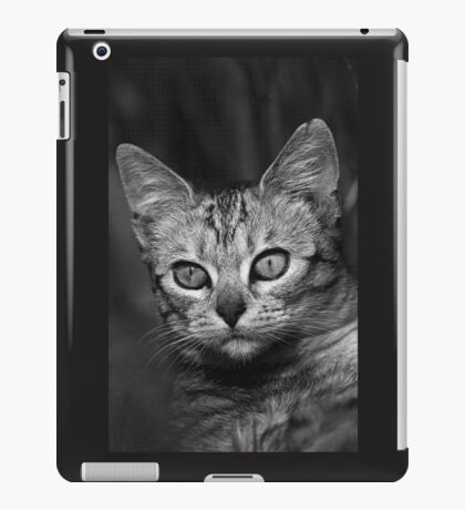 """Chat - Cat """" Peluche """" 03 (c)(h) ) by Olao-Olavia / Okaio Créations 300mm f.2.8 canon eos 5 1989  iPad Case/Skin"""