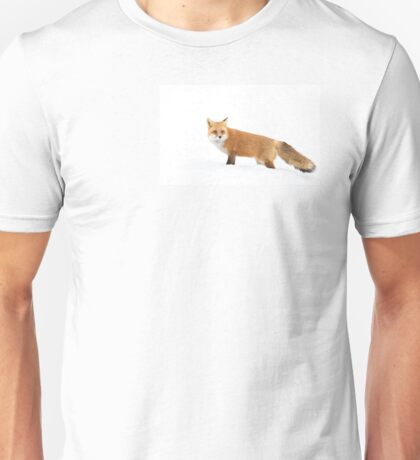 Red fox in snow - Algonquin Park T-Shirt