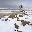 Lochindorb - Winter's Shoreline by Kevin Skinner