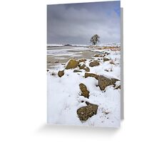 Lochindorb - Winter's Shoreline Greeting Card