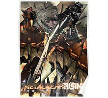 Metal Gear Rising: Revengeance - Raiden  Poster