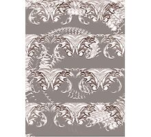 Nocturnal Animal Grey and white Feather pattern Photographic Print