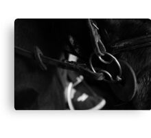 Of Horses and bits. Canvas Print