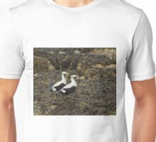 Eider Ducks Unisex T-Shirt