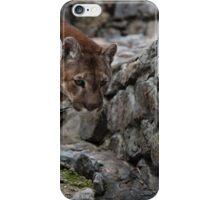 Puma iPhone Case/Skin