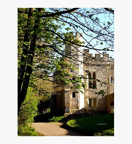 Medieval Manor Photographic Print