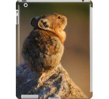 Sunset Pika iPad Case/Skin