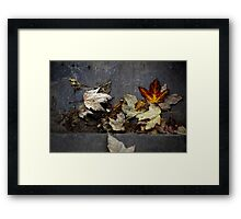 We must let go, to begin anew... (Image without text) Framed Print