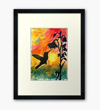 Morning Nectar Framed Print