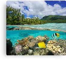 Above and below surface lagoon French Polynesia Canvas Print