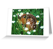 Fawn & Wildflowers Greeting Card
