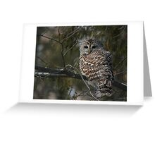 Silent in the snow Greeting Card