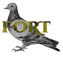 Fort Pigeon Photographic Print
