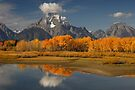 Fall in the Mountains by William C. Gladish