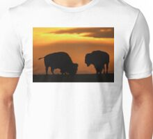 Bison Sunset Unisex T-Shirt