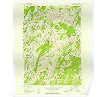 New York NY Bigelow 123289 1956 24000 Poster