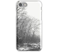 First Snow... iPhone Case/Skin