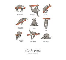 Sloth Yoga - The Definitive Guide Photographic Print